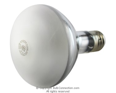 Click to View GE 21254 lamp pictures