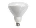 TCP 23 Watt R40 CFL Floodlight 27K Replacement Lamp only $5.07