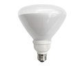 TCP 23 Watt R40 CFL Floodlight 31K Replacement Lamp only $4.97