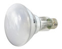 Philips 40BR30/EV/FL Replacement Lamp only $8.00